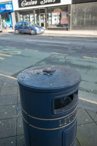 fig._#21_street_litter